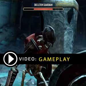 The Elder Scrolls Blades Nintendo Switch Gameplay Video