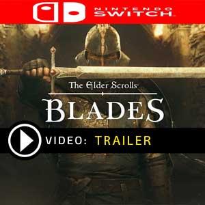 The Elder Scrolls Blades Nintendo Switch Prices Digital or Box Edition