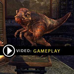 The Elder Scrolls Online Crowns Gameplay Video