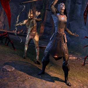 The Elder Scrolls Online Summerset Skein Spider