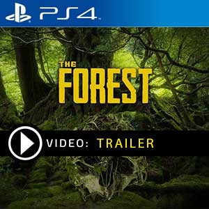 The Forest PS4 Prices Digital or Box Edition