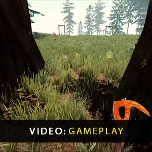 The Forest PS4 Gameplay Video