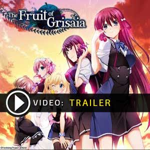 Buy The Fruit of Grisaia CD Key Compare Prices