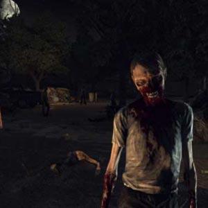 The Walking Dead Survival Instinct - Zombies