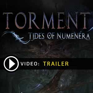 Buy Torment Tides of Numenera CD Key Compare Prices