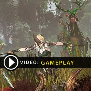 Total War WARHAMMER Realm of The Wood Elves Gameplay Video