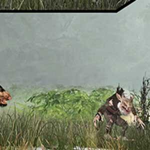 Cooperative Split-Screen Multiplayer