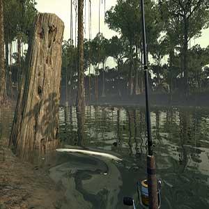 Ultimate Fishing Simulator Amazon River