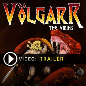 Buy Volgarr the Viking CD Key Compare Prices