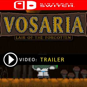 Vosaria Lair of the Forgotten Nintendo Switch Prices Digital or Box Edition
