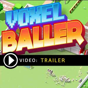 Buy Voxel Baller CD Key Compare Prices