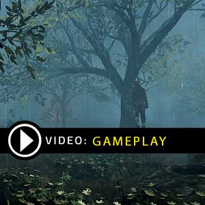 Warhammer Vermintide 2 Winds of Magic Gameplay Video