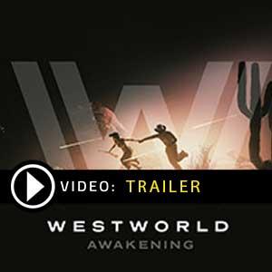 Buy Westworld Awakening CD Key Compare Prices