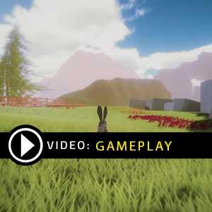 Where the Bees Make Honey Gameplay Video