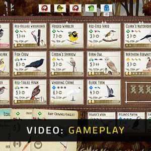 Wingspan Gameplay Video