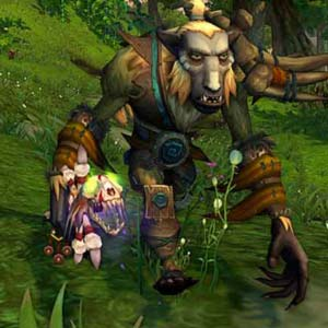 World of Warcraft Mists of Pandaria - Character